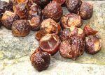soapnut-shells